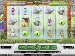 jocuri casino aparate Geisha Wonders NetEnt