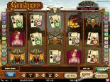 jocuri casino aparate Gunslinger Play'nGo